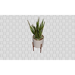 Plant_pot+02 Tilelook Generic Accessories