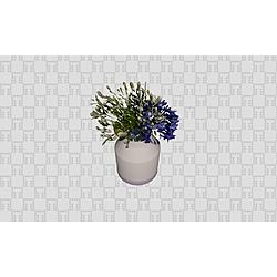 Decor+Vaso+com+Agapanto+Muuto - Collection Generic Accessories by Tilelook | Tilelook