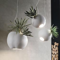 Erbaria lamp Adriani & Rossi Volume 7