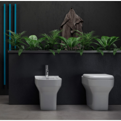 Synthesis Ceramic toilet  SYN110301 Olympia Synthesis