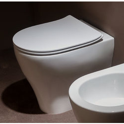 MiniApp wall hung single-hole bidet AP219 3D Flaminia App