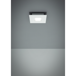 QUARTER F38	WALL & CEILING LAMP Fabbian Ceiling
