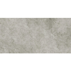 RIGA GREY(PS63FCE35M)30X60*A(พื้น) 60x30 cm Griffiths Riga