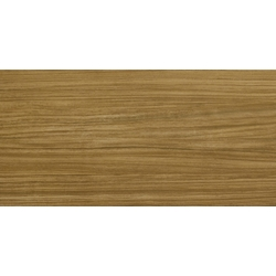 LIGHT MUTENE 120x60 cm Revigres Light - Light Floor Metallic