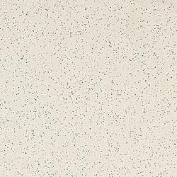 TAL61062 60x60 cm Rako Taurus Granit