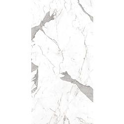 รอยัล สตาตูอาริโอ้ (SATIN)(R/T) 24X24 A 60x120 cm Boonthavorn Ceramic CottoBoon