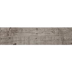 RAFTER VISON 100x24.9 cm Aparici Absolut