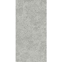 Roadstone Silver 60x120 60x120 cm Tau Cerámica Roadstone