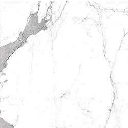 รอยัล สตาตูอาริโอ้ (SATIN)(R/T) 24X24 A 61x61 cm Boonthavorn Ceramic CottoBoon