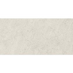 Afternoon Silver Ściana Rekt. - 59.8x29.8 59,8x29,8 cm Ceramika Paradyż Afternoon