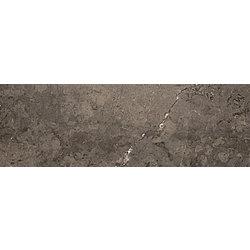 Shiny Lines Grafit Ściana Rekt. - 89.8x29.8 89,8x29,8 cm Ceramika Paradyż Shiny lines