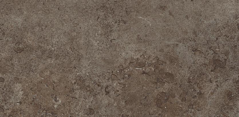 Limestone brown sq 45x90 for Carrelage 45x90