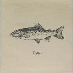 Trout Grey On Papyrus 13x13 cm The Winchester Tile Company Residence