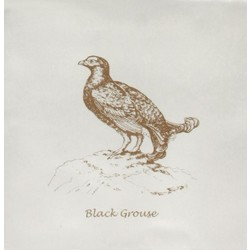Black Grouse Sepia On Palomino 13x13 cm The Winchester Tile Company Residence