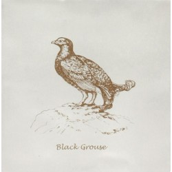 Black Grouse Sepia On Papyrus 13x13 cm The Winchester Tile Company Residence