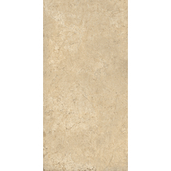 LYRIC BROWN 60x120 cm City Tiles Rustic