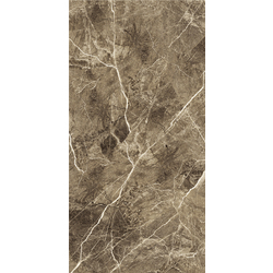 ULTRA LITHOS BROWN 60x120 cm City Tiles Ultra Polish