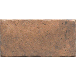 Cotto Naturale 20x10 cm Cir Recupera