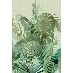 benji 120x240 cm Inkiostro Bianco Jungle