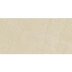 PARK LPP/RTT 8*300X600 60x30 cm Blustyle Yosemite