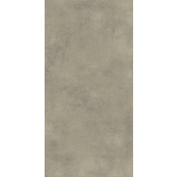 Grey Rectified 60x120 cm Ege Seramik  Mood