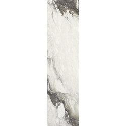 Etoile Renoir Glo 6Mm 60X240 Ret 60x240 cm Rex Etoile de Rex