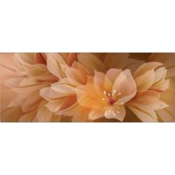 Fiore F-53001 50x20 cm Zalakerámia Elegance