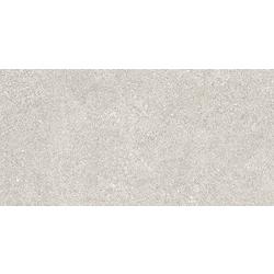 30X60 R-Evolution Bianco 60x30 cm Ceramica Euro R-Evolution